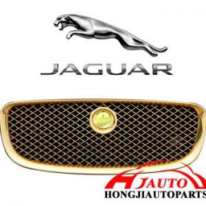 jaguar 2012 fornt grille
