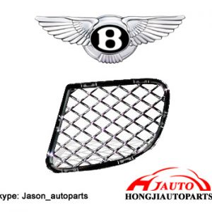 Bentley Flying Spur Speed Bumper Grille 3W5807684