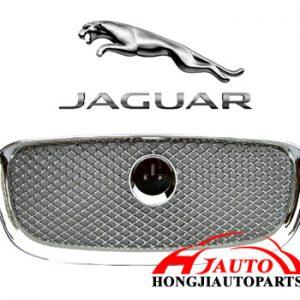 C2Z13199 jaguar
